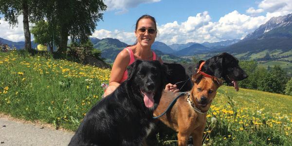 Tagesbetreuung-kikis-dogcare-1