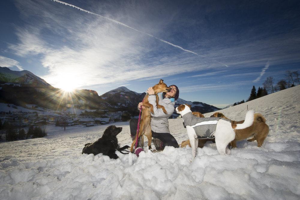 kikis dog care hundebetreuung fieberbrunn00010